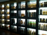 Backlit Liquor Shelves - Earlsmann UK - LumaPex